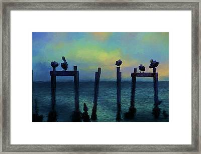 Framed Print featuring the photograph Pelicans At Sunset by Jan Amiss Photography