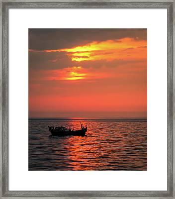Pelicans At Sunset Framed Print