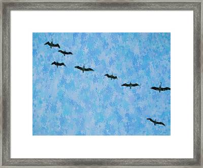 Pelicans' Flight Framed Print