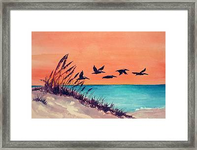 Pelicans Flying Low Framed Print