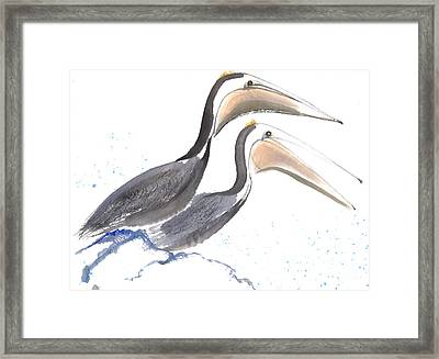 Pelicans Framed Print by Mui-Joo Wee