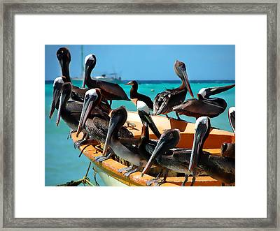 Pelicans On A Boat Framed Print by Bibi Romer