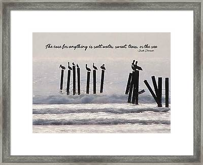 Pelicans Perched Quote Framed Print by JAMART Photography