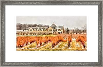 Peller Estates - Niagara On The Lake - January Framed Print