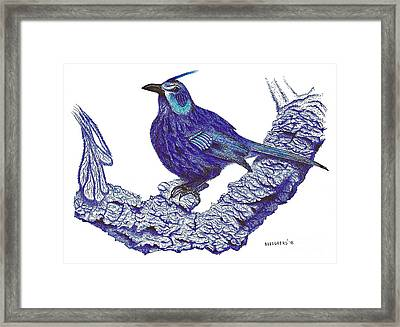 Pen And Ink Drawing Of Blue Bird Framed Print by Mario Perez