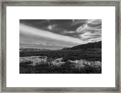 Penasquitos Creek Marsh Framed Print