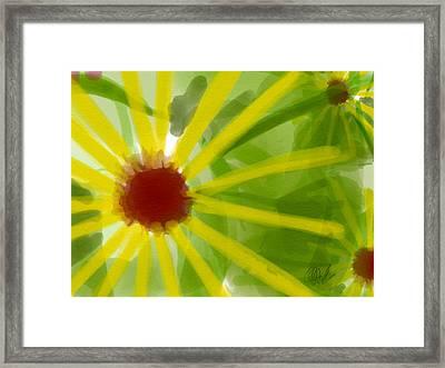 Pencil Daisies Framed Print