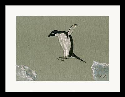 Sealife Art Framed Prints