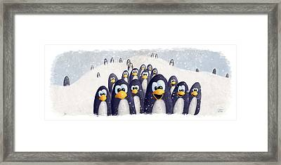 Penguin Winter Framed Print by David Breeding
