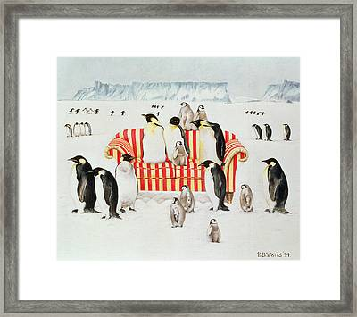 Penguins On A Red And White Sofa  Framed Print