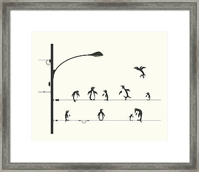 Penguins On A Wire Framed Print by Jazzberry Blue