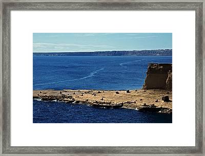 Peninsula De Valdez Framed Print by Juergen Weiss