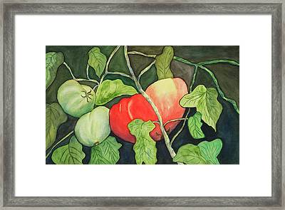 Framed Print featuring the painting Penlands Patch by Joan Zepf