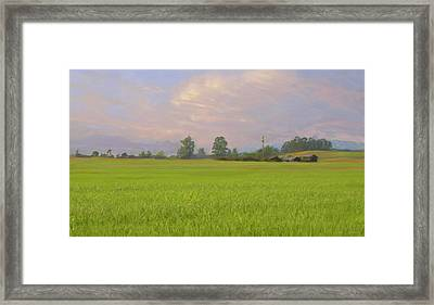 Penngrove Field Framed Print by Thomas  Hansen