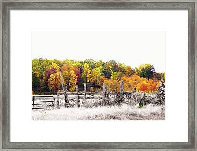 Pennsylvania Color Kiss Framed Print
