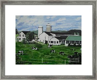 Pennsylvania Holstein Dairy Farm  Framed Print