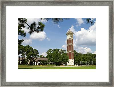 Pensacola State College Framed Print
