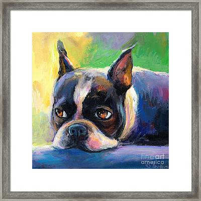 Pensive Boston Terrier Dog Painting Framed Print