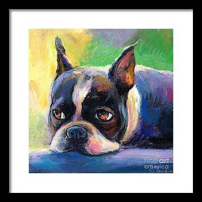 Boston Terrier Framed Prints