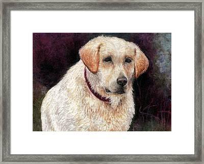 Pensive Golden Retriever Framed Print by Melissa J Szymanski