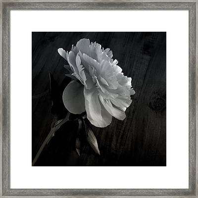 Framed Print featuring the photograph Peonie by Sharon Jones