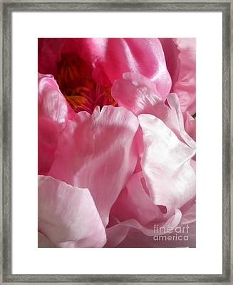 Peonies And Glass Framed Print