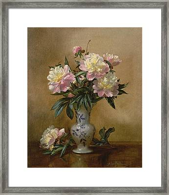 Peonies In A Blue And White Vase Framed Print by Albert Williams
