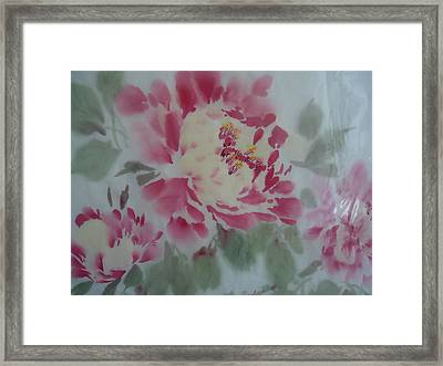 Peony 4 Framed Print by Dongling Sun