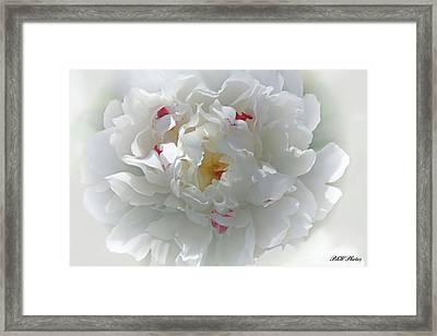 Framed Print featuring the photograph Peony by Bonnie Willis