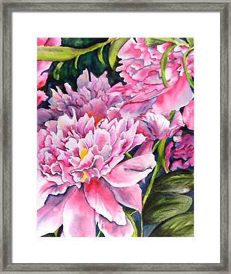 Peony In Pink Framed Print