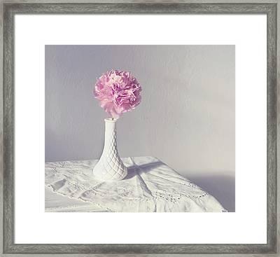 Peony In The Light Framed Print