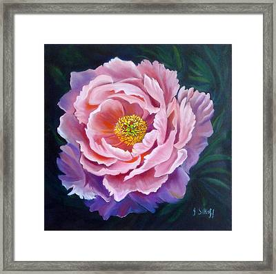Peony Framed Print by Janet Silkoff