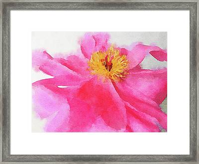 Framed Print featuring the digital art Peony by Mark Greenberg