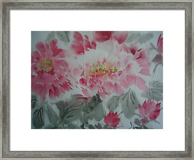 Peony5 Framed Print by Dongling Sun
