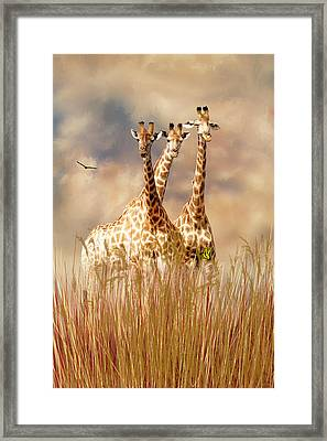 People Watchers Framed Print