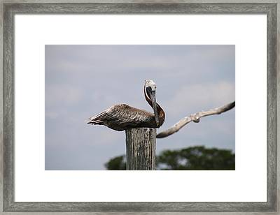 Waiting For Ship To Roll In Framed Print