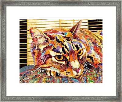 Pepa Framed Print by Bob Coonts