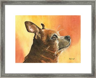 Pepe Framed Print by Marsha Elliott