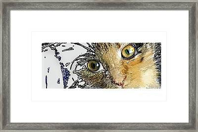 Pepper Eyes Framed Print