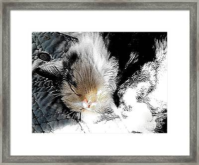 Pepper Sunface Framed Print
