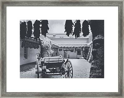 Peppers And Snow Framed Print