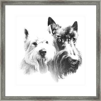Pepsi And Max Framed Print by Charmaine Zoe