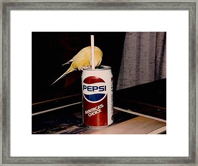 Pepsi Girl Framed Print by Judyann Matthews