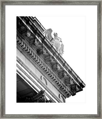 Perch Bw Framed Print by Slade Roberts