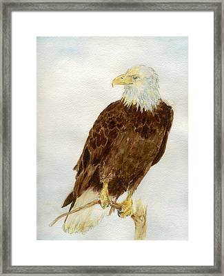 Framed Print featuring the painting Perched Eagle by Andrew Gillette