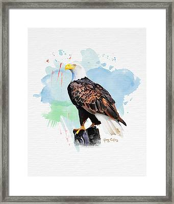 Framed Print featuring the painting Perched Eagle by Greg Collins