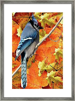 Perched In Autumn  Framed Print by Debra     Vatalaro