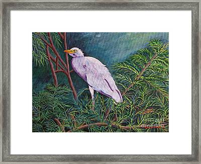 Perched On High Framed Print