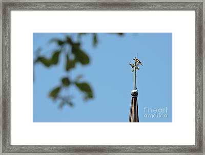 Perched On The Cross Framed Print