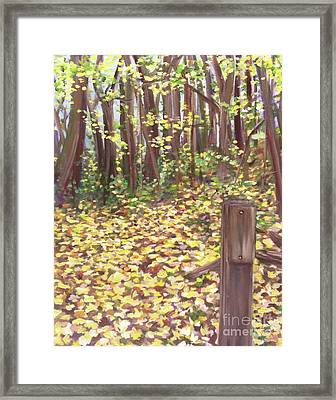 Percy Warner Trees Framed Print by Jessica Peoples